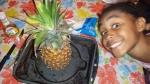 The Pineapp!e